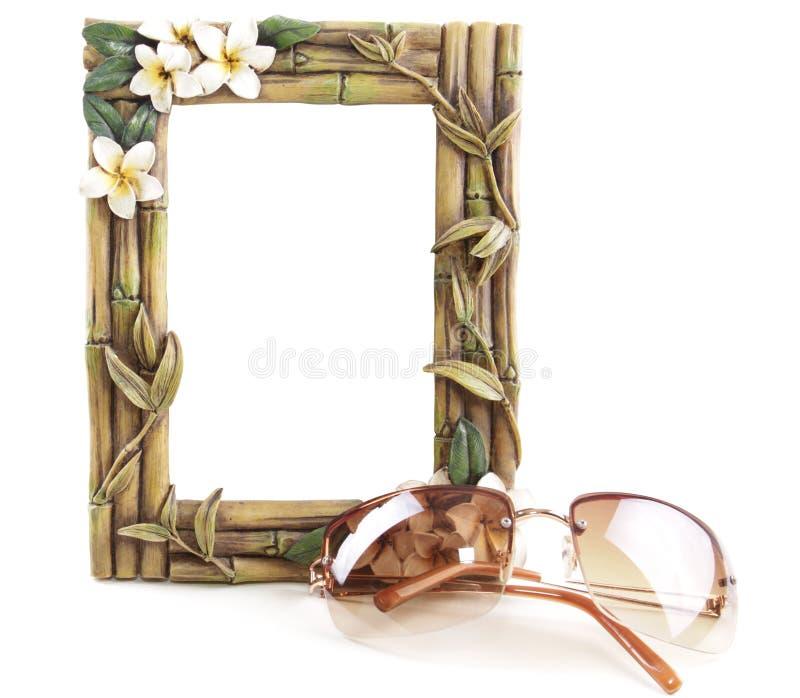 Tropisches Feld und Sun-Gläser lizenzfreie stockfotos