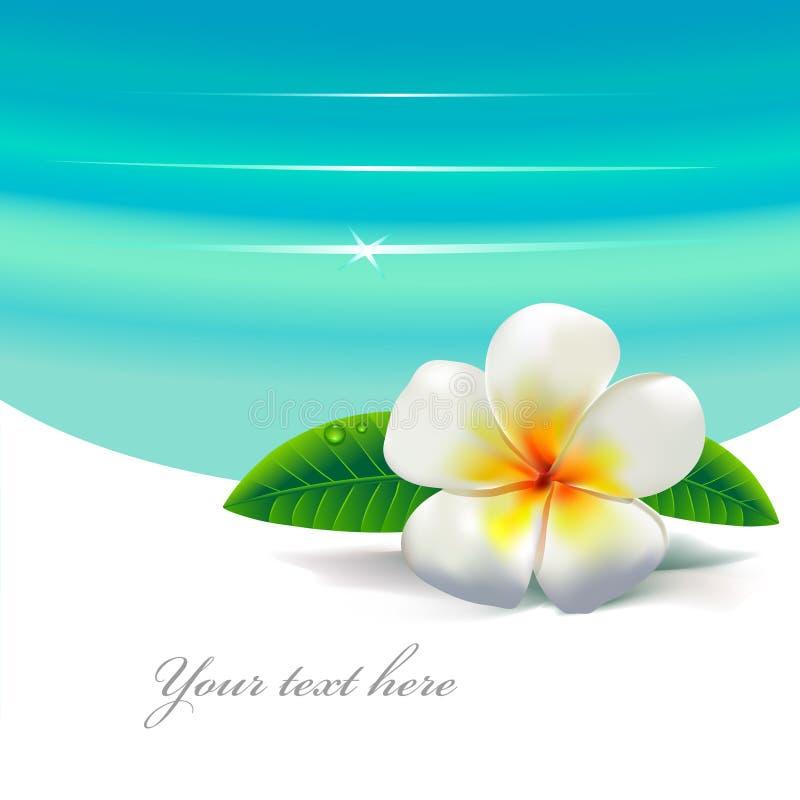 Tropisches flover lizenzfreie abbildung