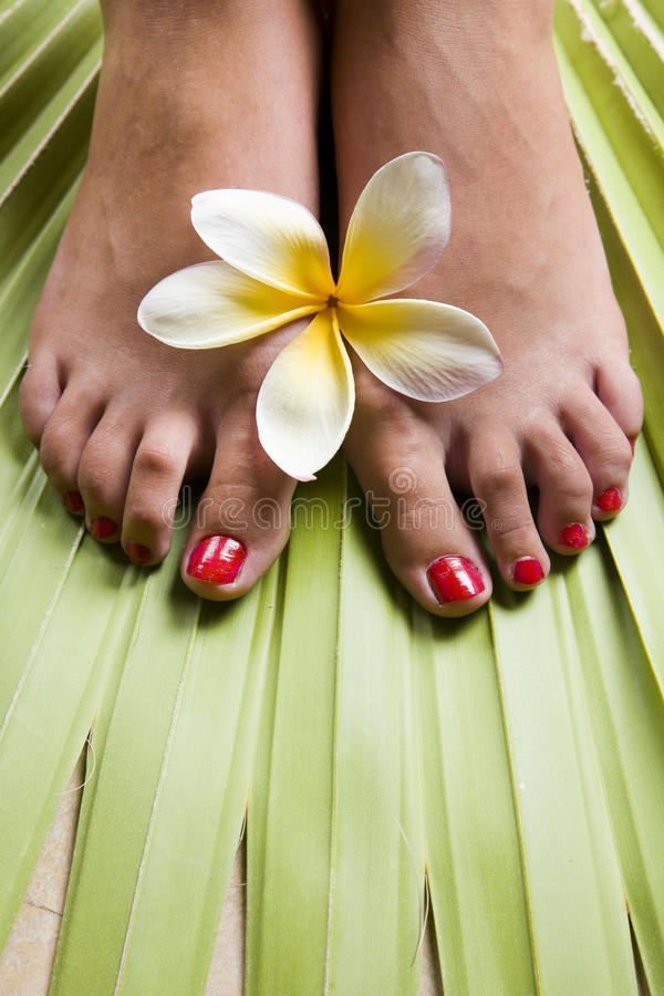 Tropisches Footspa lizenzfreie stockfotos