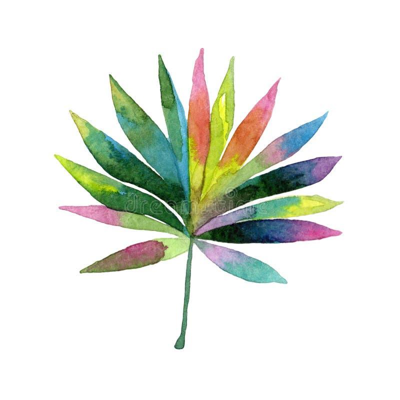 Tropisches Hawaii lässt Palme in einer Aquarellart lokalisiert stock abbildung