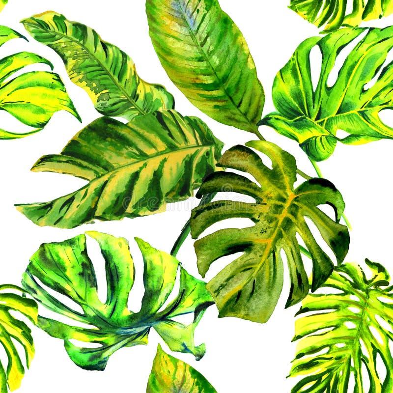 Tropisches Hawaii lässt Palmemuster in einer Aquarellart lokalisiert lizenzfreie abbildung