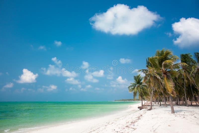 Tropisches Insel-Paradies Lizenzfreie Stockfotografie