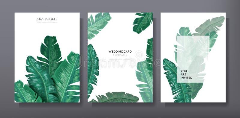 Tropisches modisches Gruß- oder Einladungskartenschablonendesign, Satz des Plakats, Flieger, Broschüre, Abdeckung, Parteianzeige vektor abbildung