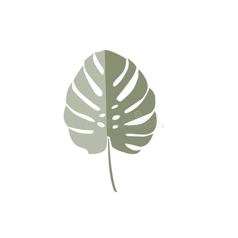 Tropisches monstera Blatt Grünes Palmblatt des Vektors lizenzfreie stockfotografie