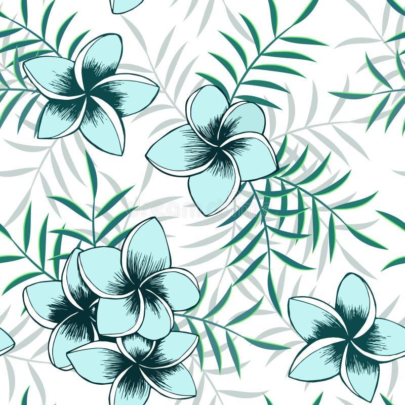 Tropisches nahtloses hawaiisches Plumeriavektormuster stockbilder