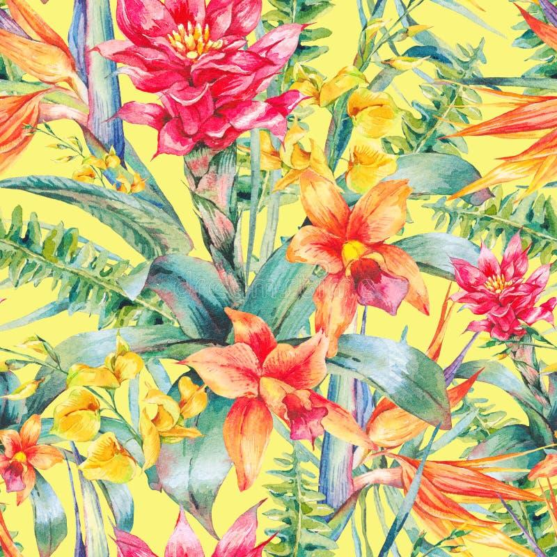 Tropisches nahtloses mit Blumenmuster der Aquarellweinlese lizenzfreie abbildung