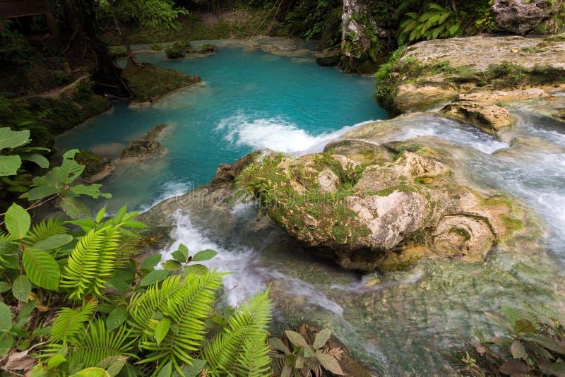Tropisches natürliches Pool stockbild
