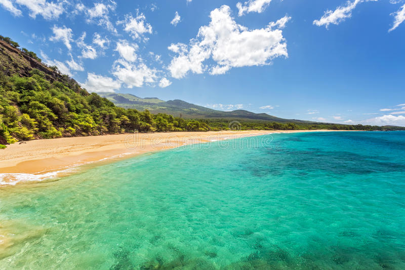Tropisches Paradies gefunden lizenzfreie stockfotos