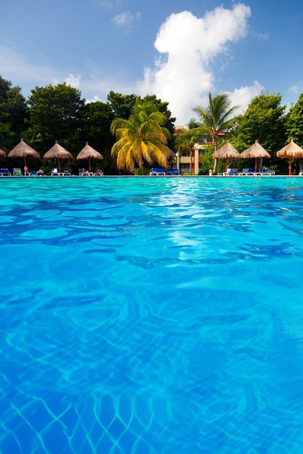 Download Tropisches Pool stockbild. Bild von ferien, meer, reise - 26364757