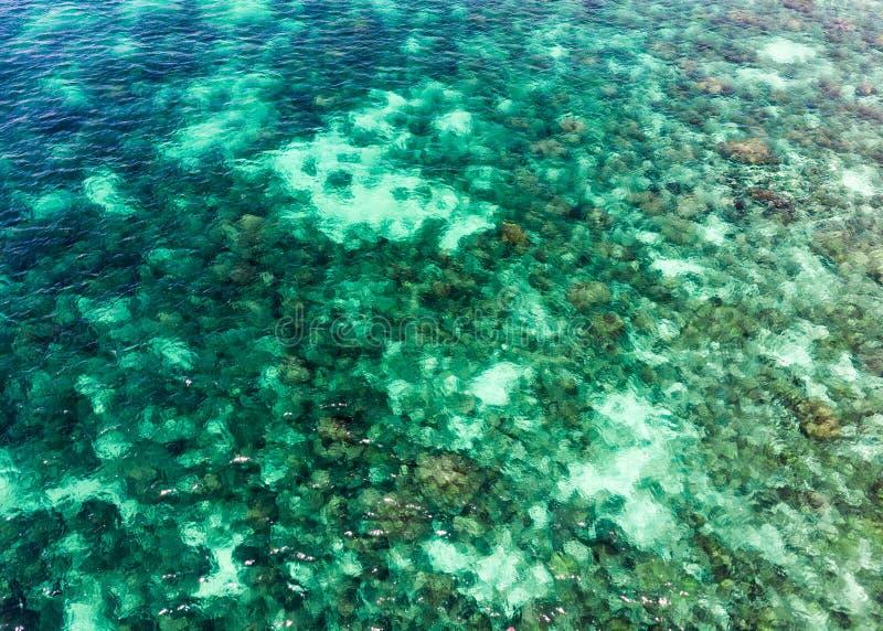 Tropisches Smaragdmeer mit Korallenriff in andaman Insel stockfoto