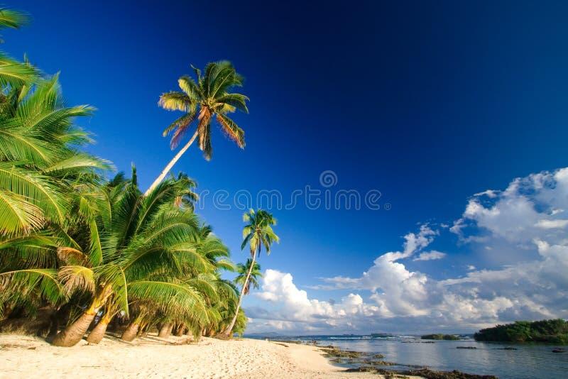 Tropisches Strandparadies stockfotografie