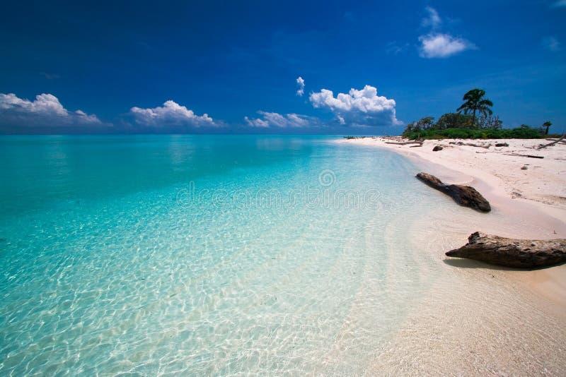 Tropisches Strandparadies lizenzfreie stockfotos