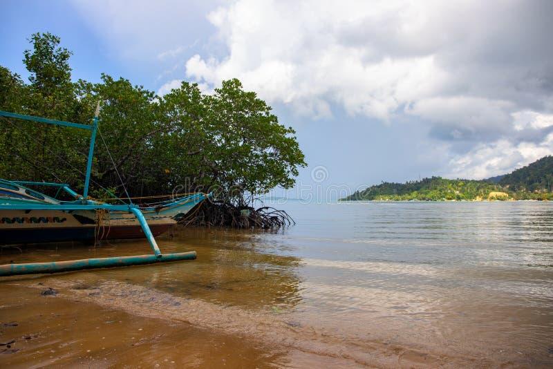 Tropisk ökust Mangroveskoglandskap Gammalt fiskarefartyg som överges på stranden arkivbilder
