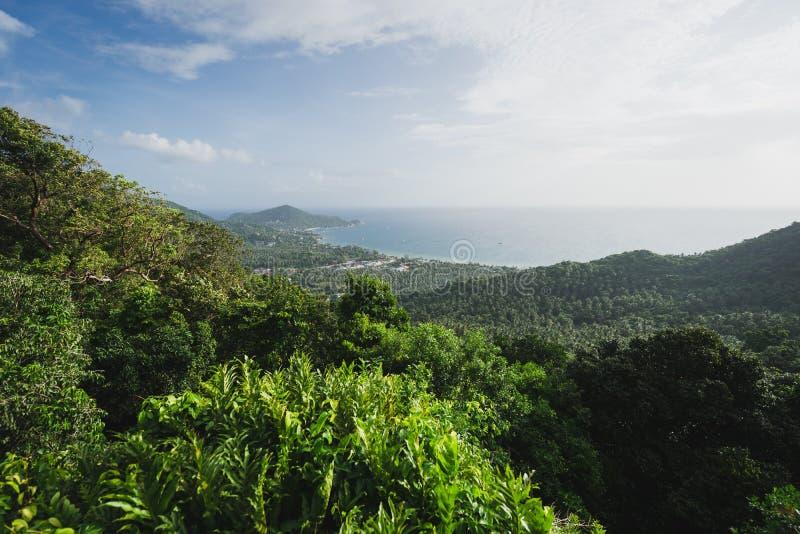 Tropisk ösynvinkel royaltyfri bild