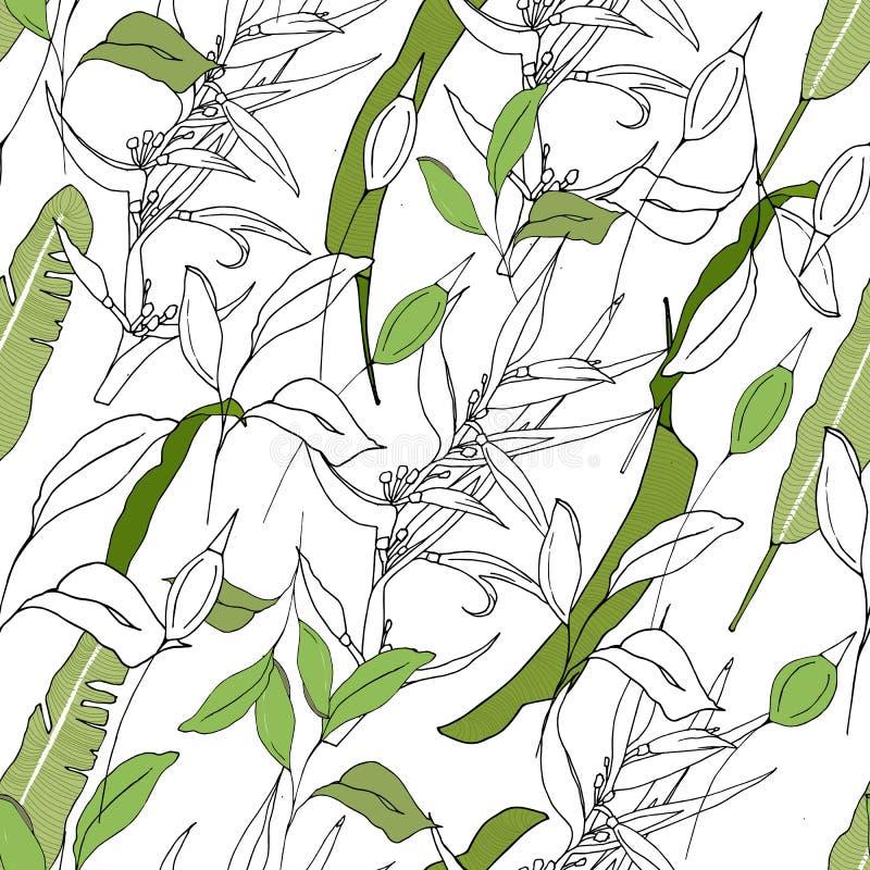 Tropisk bakgrund av deras gräsplan- och konturväxter Ljus textur för tyger, tegelplattor och papper och väggpapper royaltyfri illustrationer