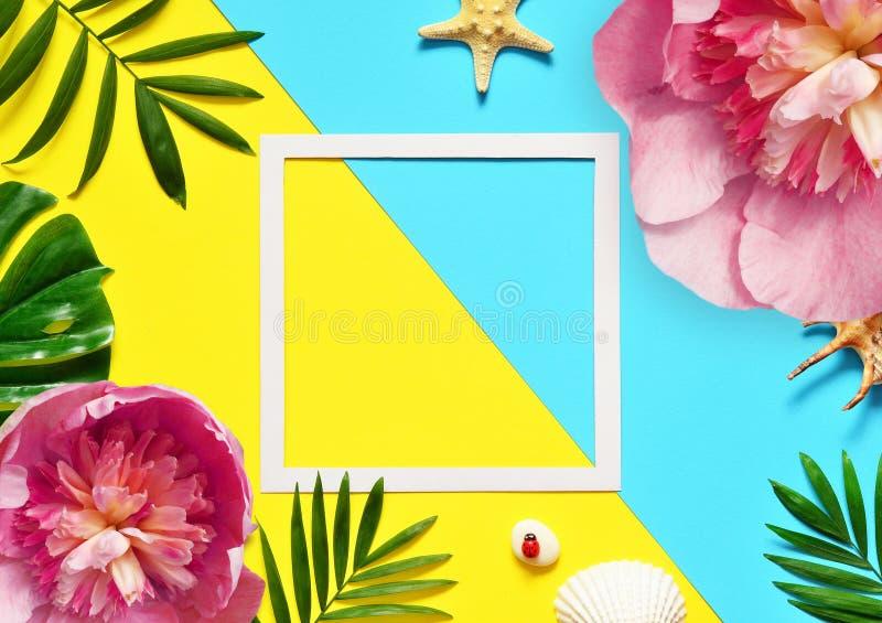 tropisk bakgrund Palmträdfilialer med sjöstjärnan och snäckskalet på guling- och blåttbakgrund Resor kopiera avstånd royaltyfria foton