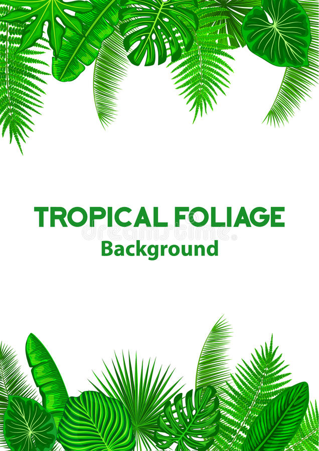 Tropisk bakgrundsram med exotiska djungelsidor stock illustrationer