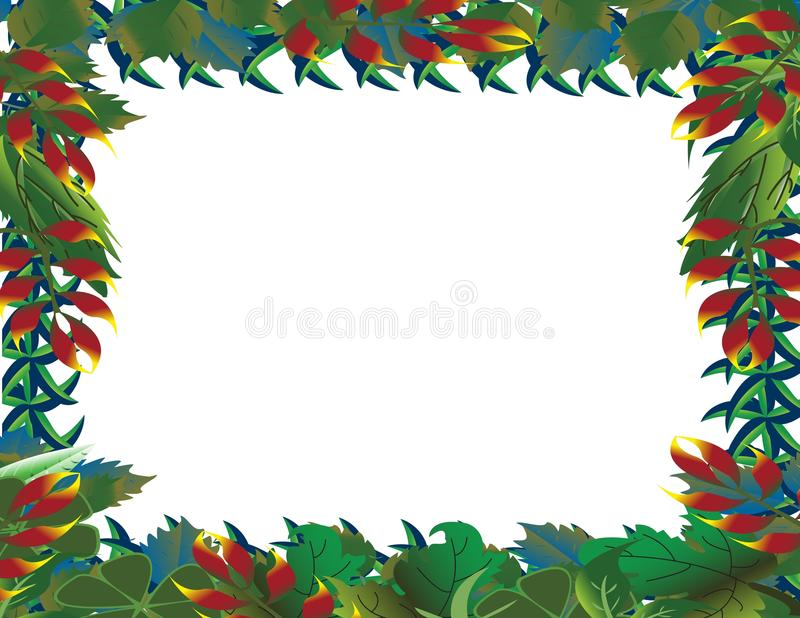 tropisk bakgrundsskog royaltyfri illustrationer
