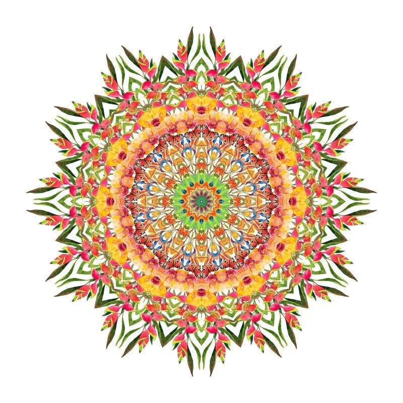 Tropisk blom- mandala för vattenfärg Naturligt snöra åt isolerat på vit bakgrund stock illustrationer