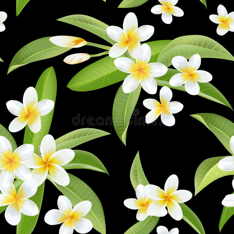 Tropisk blomma- och sidamodell Seamless bakgrund stock illustrationer