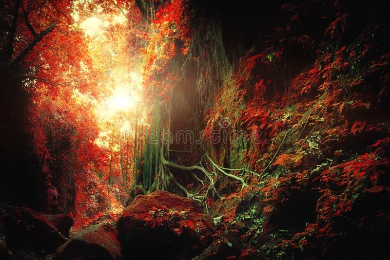 Tropisk djungelskog för fantasi i overkliga färger arkivbild