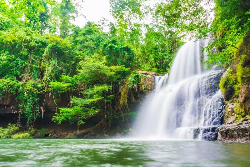 Tropisk djup skogKlong Chao vattenfall i den Koh Kood ön royaltyfri foto