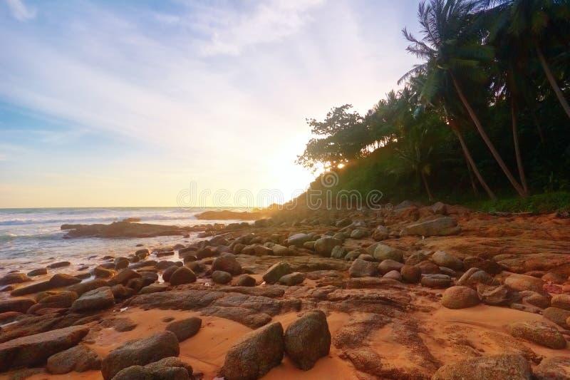 tropisk drömlik solnedgång arkivfoto