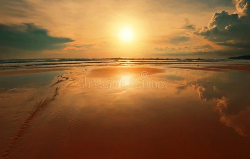 tropisk drömlik solnedgång royaltyfri foto