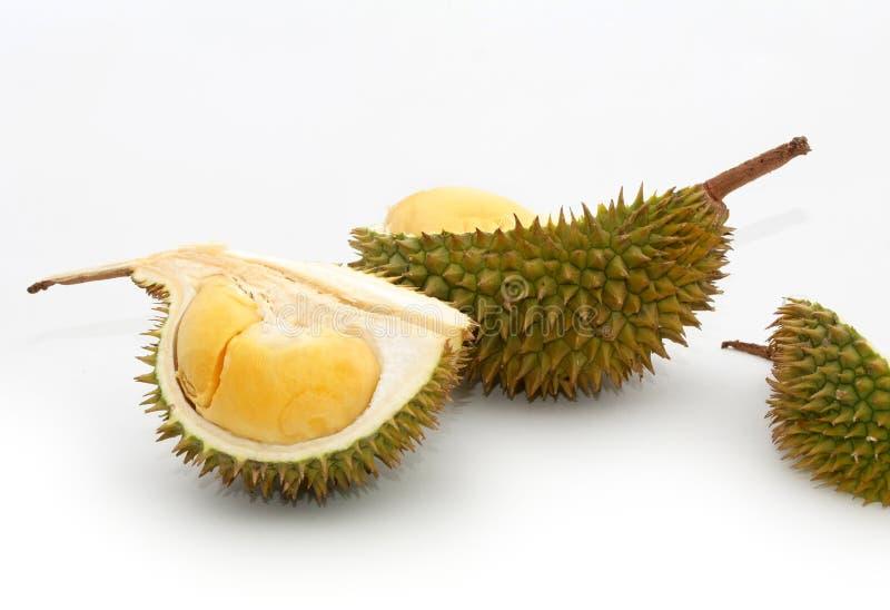 tropisk durianfrukt royaltyfri fotografi
