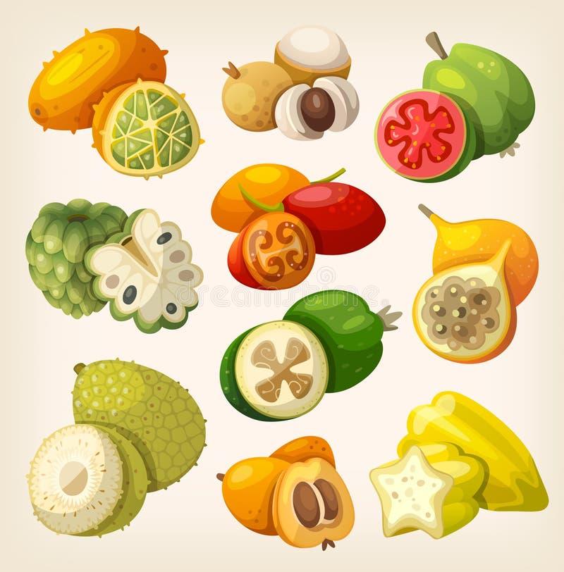 tropisk exotisk frukt stock illustrationer