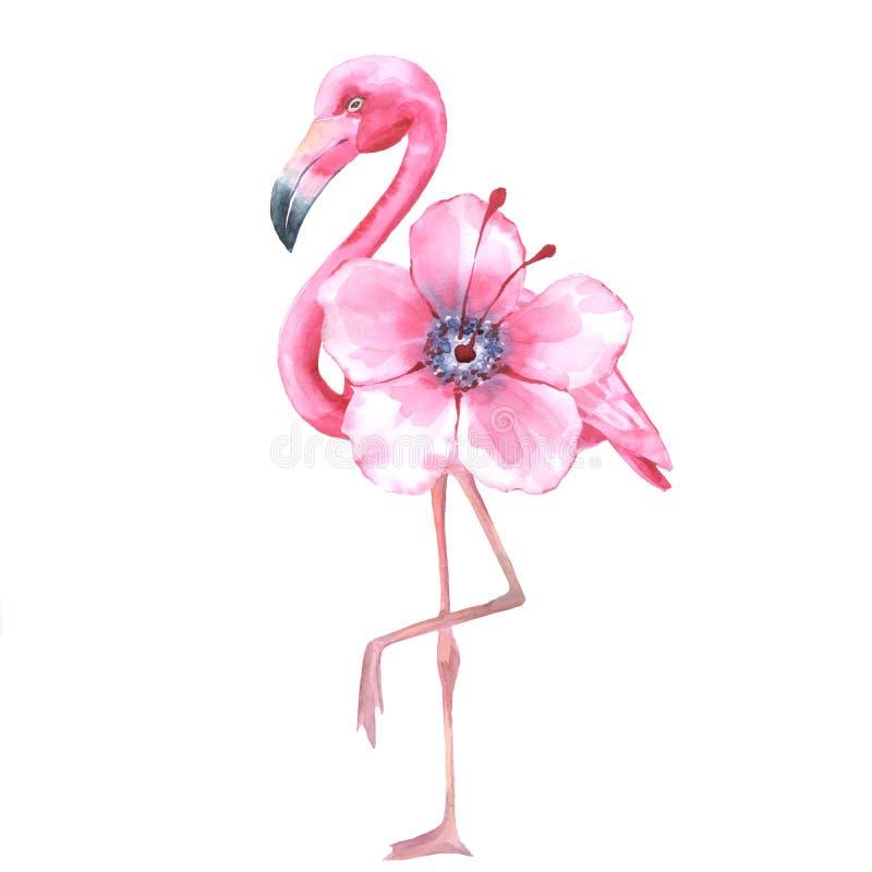 Tropisk fågel Rosa Flamingo Vattenfärg 1 vektor illustrationer