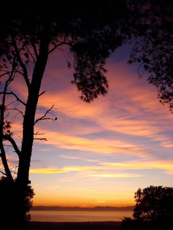 Tropisk fantastisk himmel f?rgar h?gkvalitativa tryck f?r bakgrundstapet arkivfoto