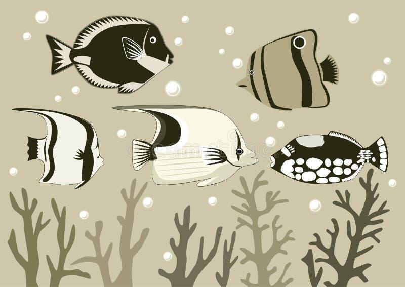 Tropisk fisk vektor illustrationer
