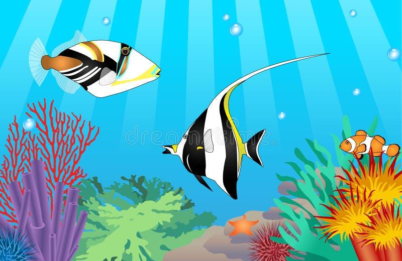Tropisk fisk för vektor royaltyfri bild