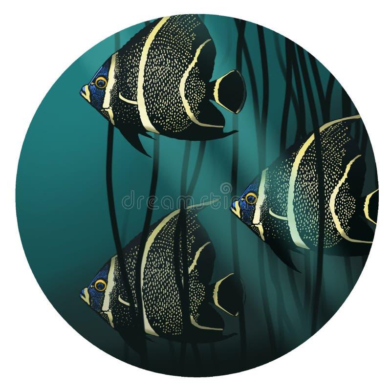 tropisk fiskillustration Fisksimning i havsväxt royaltyfri illustrationer