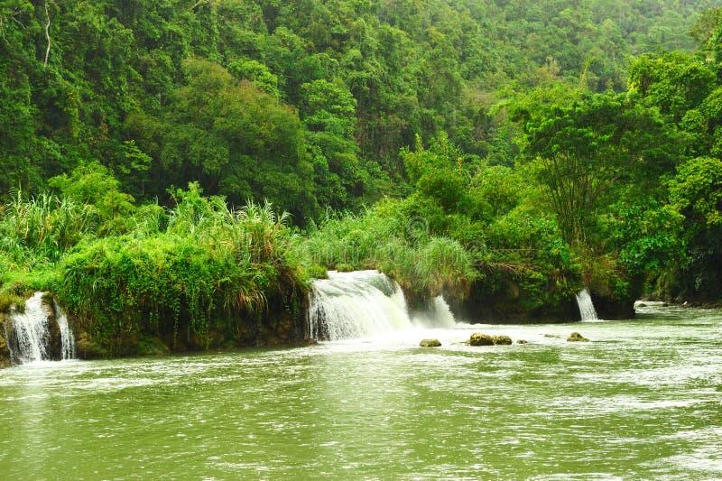 tropisk flod arkivbilder