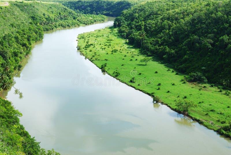 tropisk flod royaltyfri bild