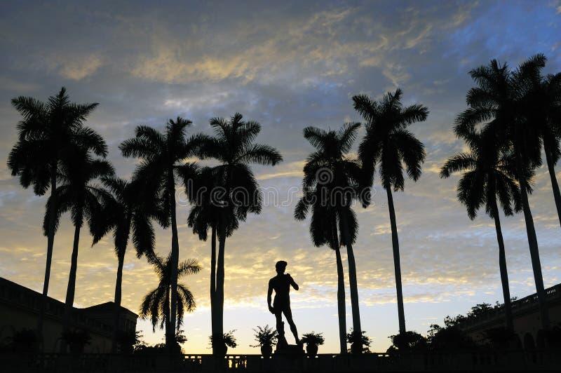 tropisk florida solnedgång royaltyfria bilder