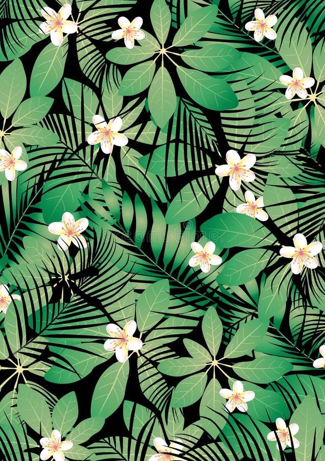 Tropisk frangipani stock illustrationer