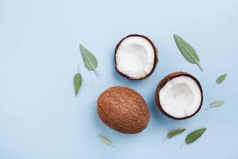 Tropisk frukt för kokosnöt som är hel och som är halv på bästa sikt för blå pastellfärgad bakgrund lekmanna- stil för lägenhet royaltyfri fotografi