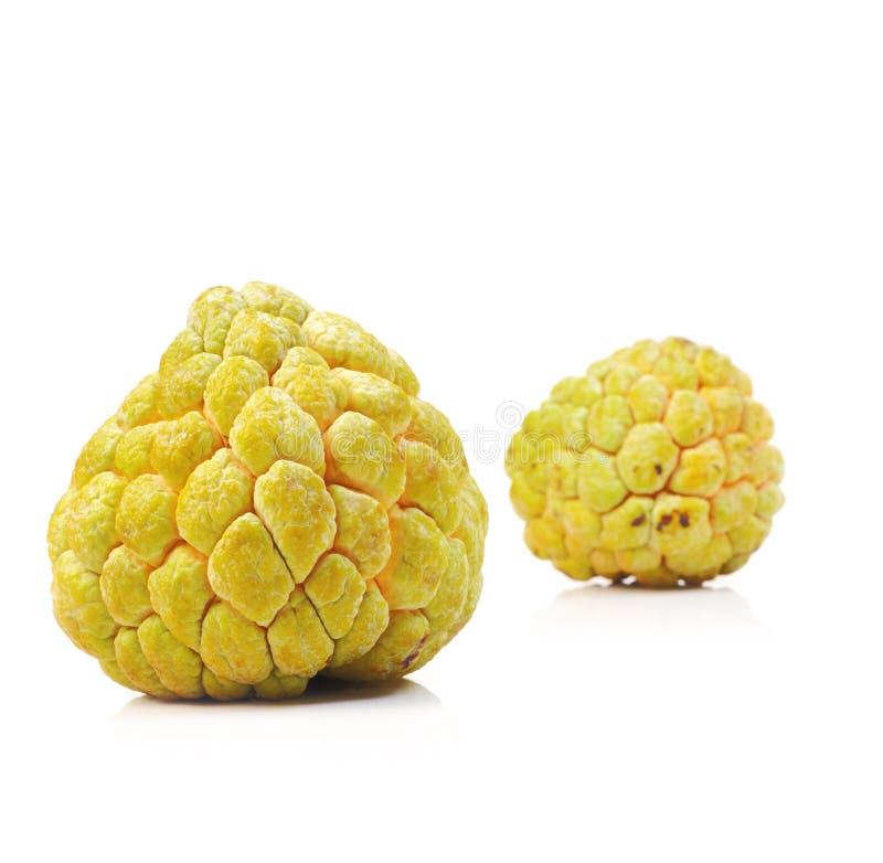 Tropisk frukt för vaniljsåsäpple royaltyfri fotografi
