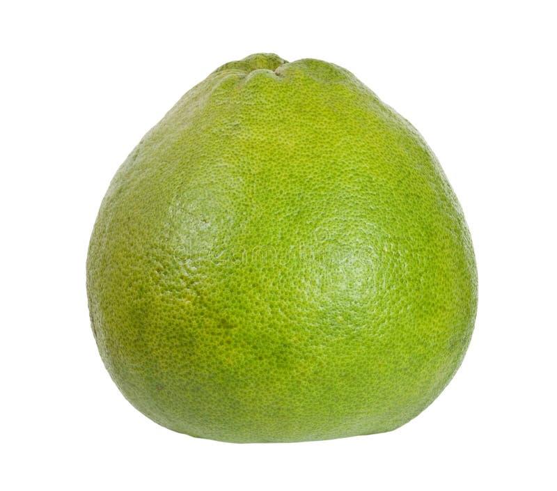 tropisk fruktpomelo royaltyfri foto