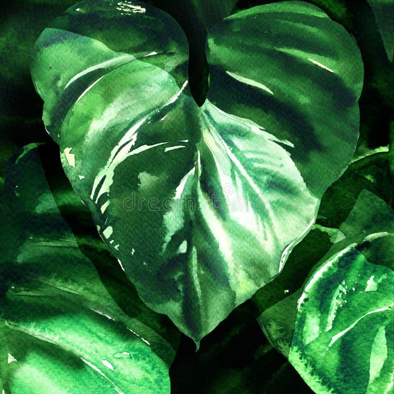 tropisk gräsplan lämnar bakgrund Naturbegrepp, stort mörkt blad, grön lövverk, vattenfärgillustration arkivfoton