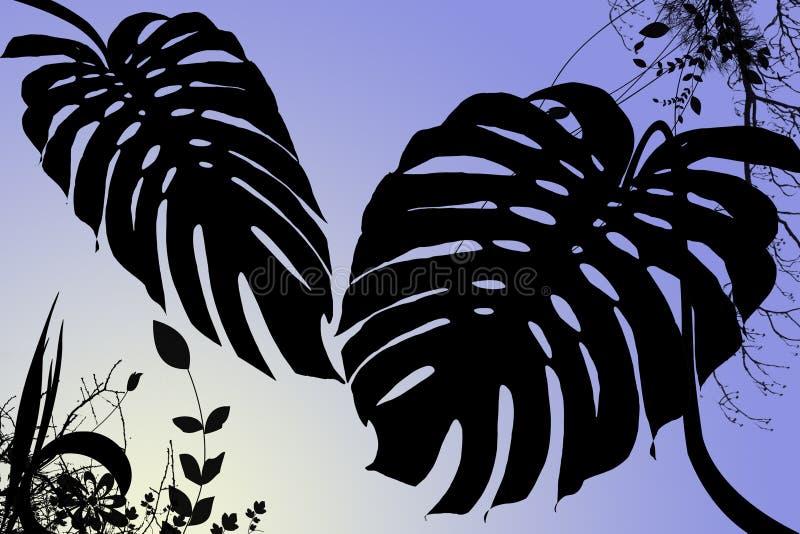 tropisk gryning vektor illustrationer