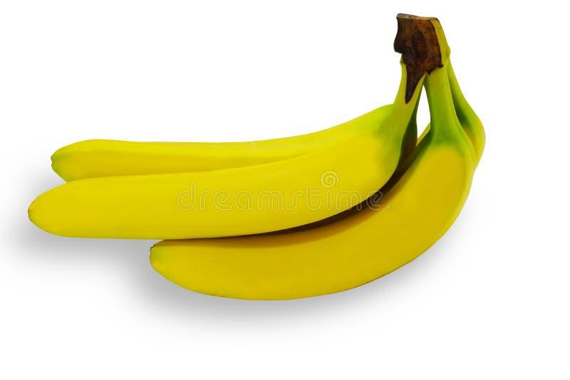 Tropisk gul bakgrund för Banane frukt isolerad natur royaltyfria foton