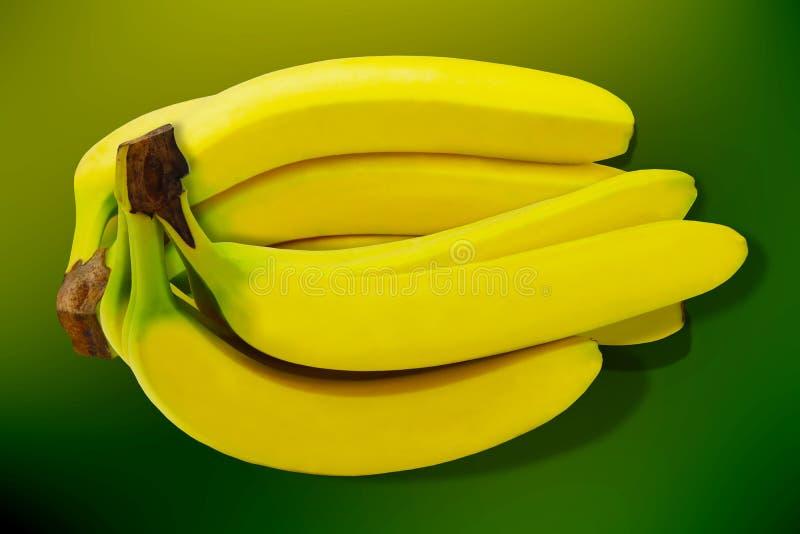 Tropisk gul bakgrund för Banane frukt isolerad natur royaltyfri fotografi