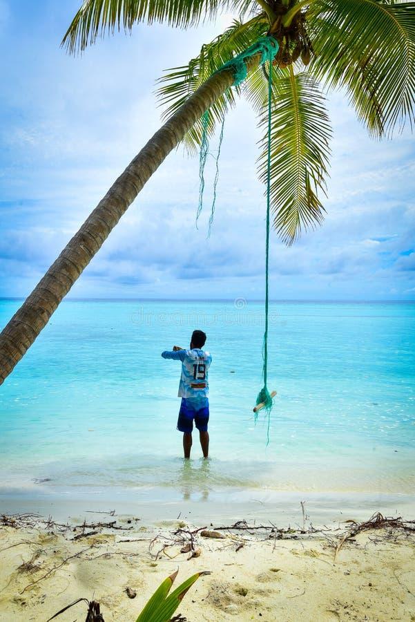 Tropisk hamn i den Thaa atollen, Maldiverna royaltyfri fotografi