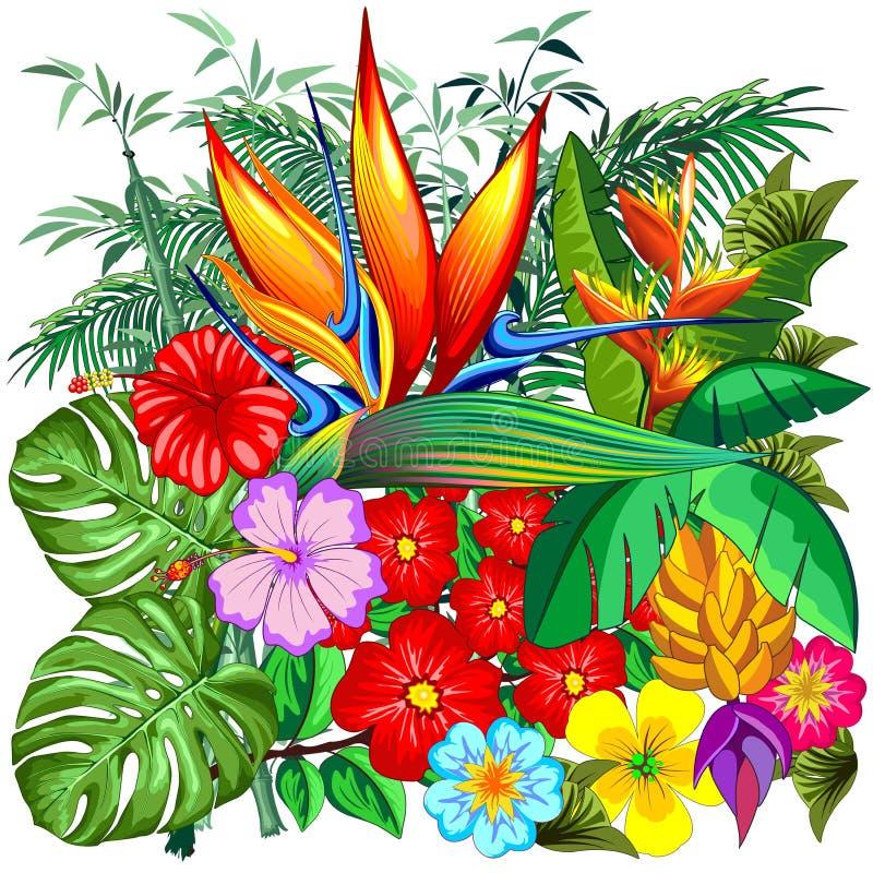 Tropisk illustration för naturbotanisk trädgårdvektor royaltyfri illustrationer