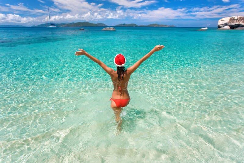 tropisk jul royaltyfria bilder