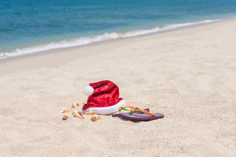 tropisk jul arkivbilder